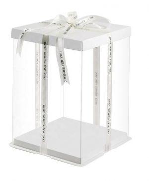 Cake Box Clear Tall 3